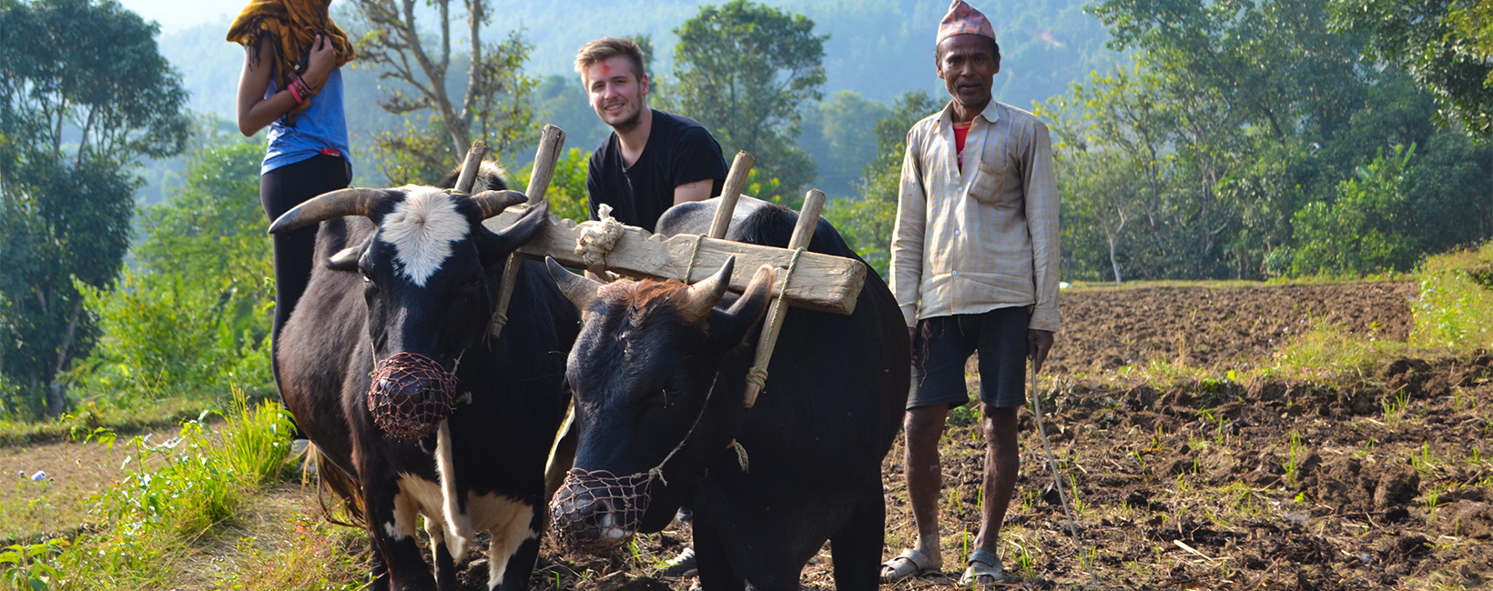 Cultural Immersion Program with Gap Year Nepal